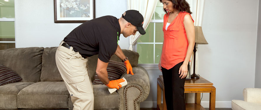 Iowa City, IA carpet upholstery cleaning